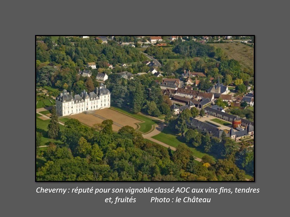 Cheverny : réputé pour son vignoble classé AOC aux vins fins, tendres et, fruités Photo : le Château