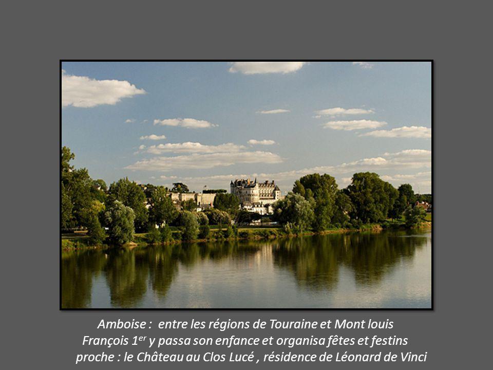 Amboise : entre les régions de Touraine et Mont louis François 1 er y passa son enfance et organisa fêtes et festins proche : le Château au Clos Lucé, résidence de Léonard de Vinci