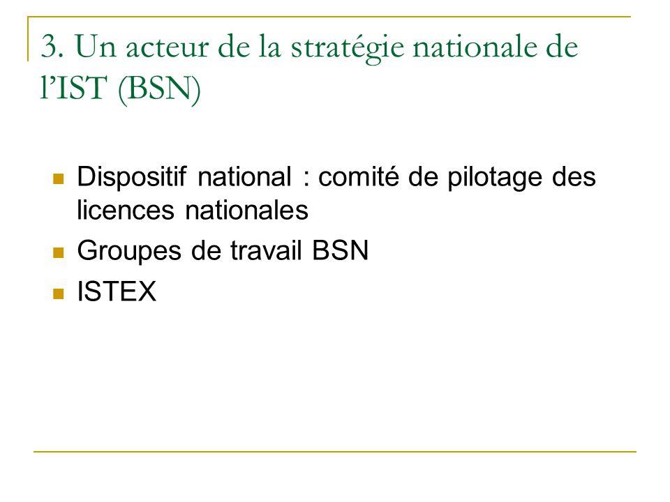 3. Un acteur de la stratégie nationale de l'IST (BSN)  Dispositif national : comité de pilotage des licences nationales  Groupes de travail BSN  IS