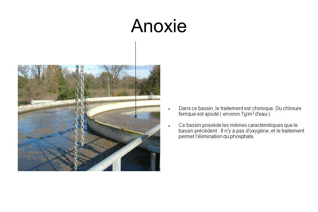 Anoxie  Dans ce bassin, le traitement est chimique.