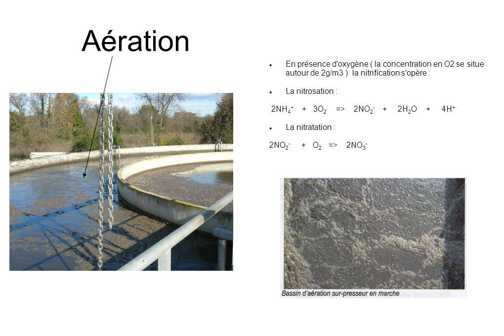 Aération  En présence d oxygène ( la concentration en O2 se situe autour de 2g/m3 ) la nitrification s opère :  La nitrosation : 2NH 4 + + 3O 2 => 2NO 2 - + 2H 2 O + 4H +  La nitratation : 2NO 2 - + O 2 => 2NO 3 -