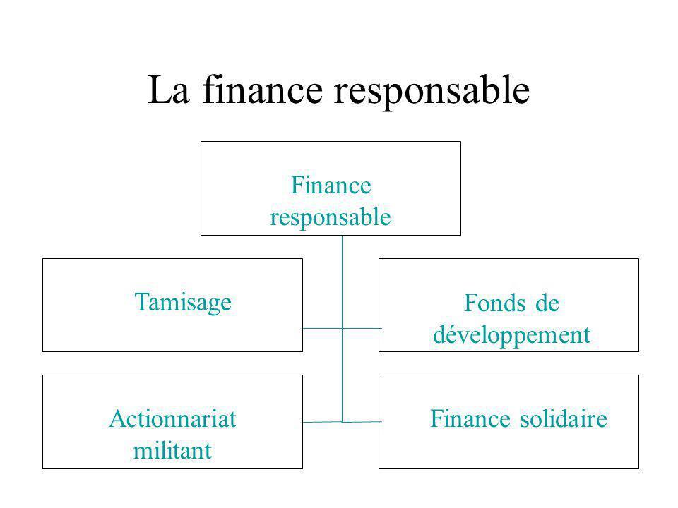 Défis et portée régulatoire des NMSÉ à l'ère de la mondialisation Un mouvement social… … ou une niche du marché Une transformation par la pression sociale la pression politique ou la pression du marché.