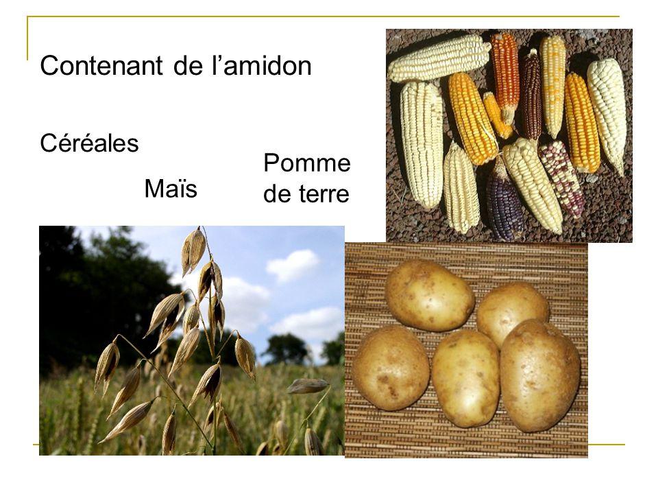Contenant de l'amidon Céréales Maïs Pomme de terre