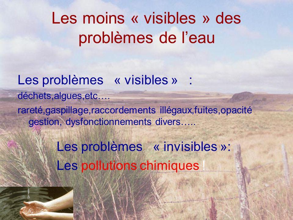 Les moins « visibles » des problèmes de l'eau Les problèmes « visibles » : déchets,algues,etc…. rareté,gaspillage,raccordements illégaux,fuites,opacit