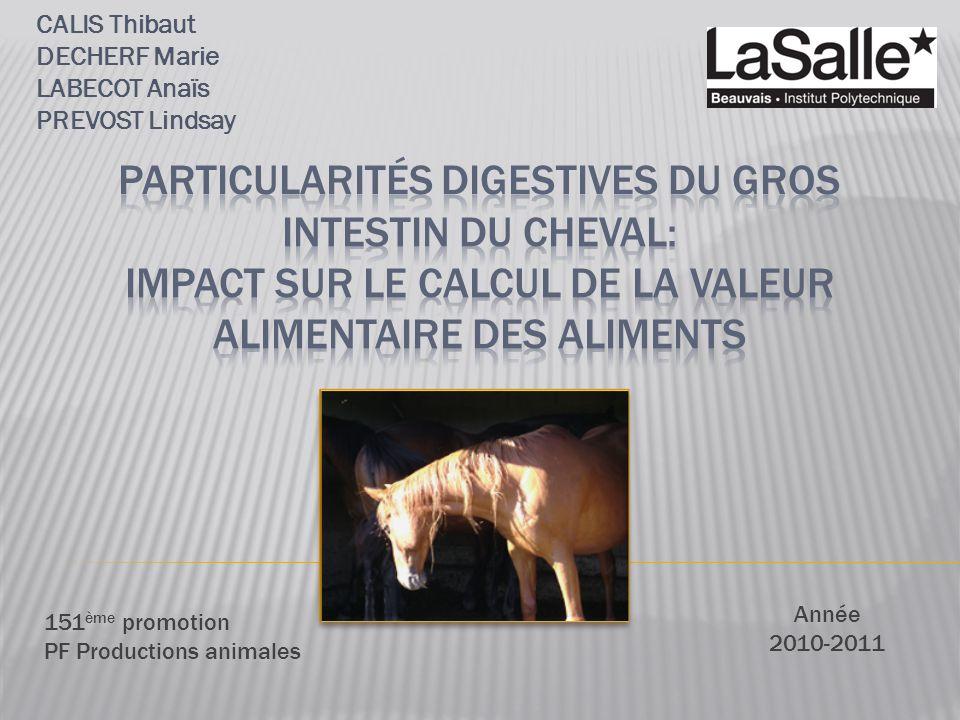 CALIS Thibaut DECHERF Marie LABECOT Anaïs PREVOST Lindsay Année 2010-2011 151 ème promotion PF Productions animales