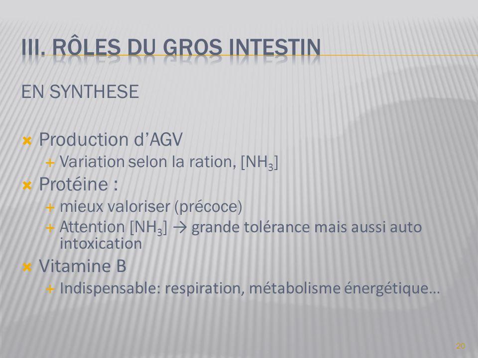 EN SYNTHESE  Production d'AGV  Variation selon la ration, [NH 3 ]  Protéine :  mieux valoriser (précoce)  Attention [NH 3 ] → grande tolérance ma