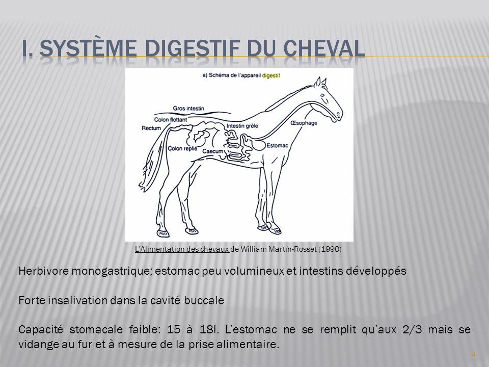 Herbivore monogastrique; estomac peu volumineux et intestins développés Forte insalivation dans la cavité buccale Capacité stomacale faible: 15 à 18l.