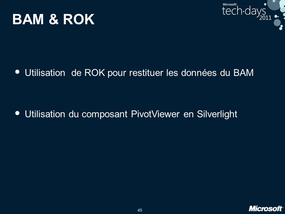 45 BAM & ROK • Utilisation de ROK pour restituer les données du BAM • Utilisation du composant PivotViewer en Silverlight
