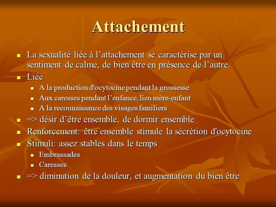 Attachement  La sexualité liée à l'attachement se caractérise par un sentiment de calme, de bien être en présence de l'autre.  Liée  A la productio