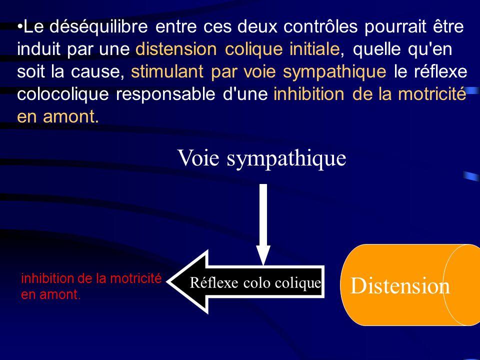 Distension Réflexe colo colique Voie sympathique inhibition de la motricité en amont.