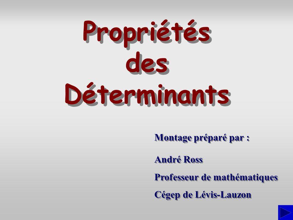 Introduction Nous présentons dans ce diaporama les propriétés des déterminants.