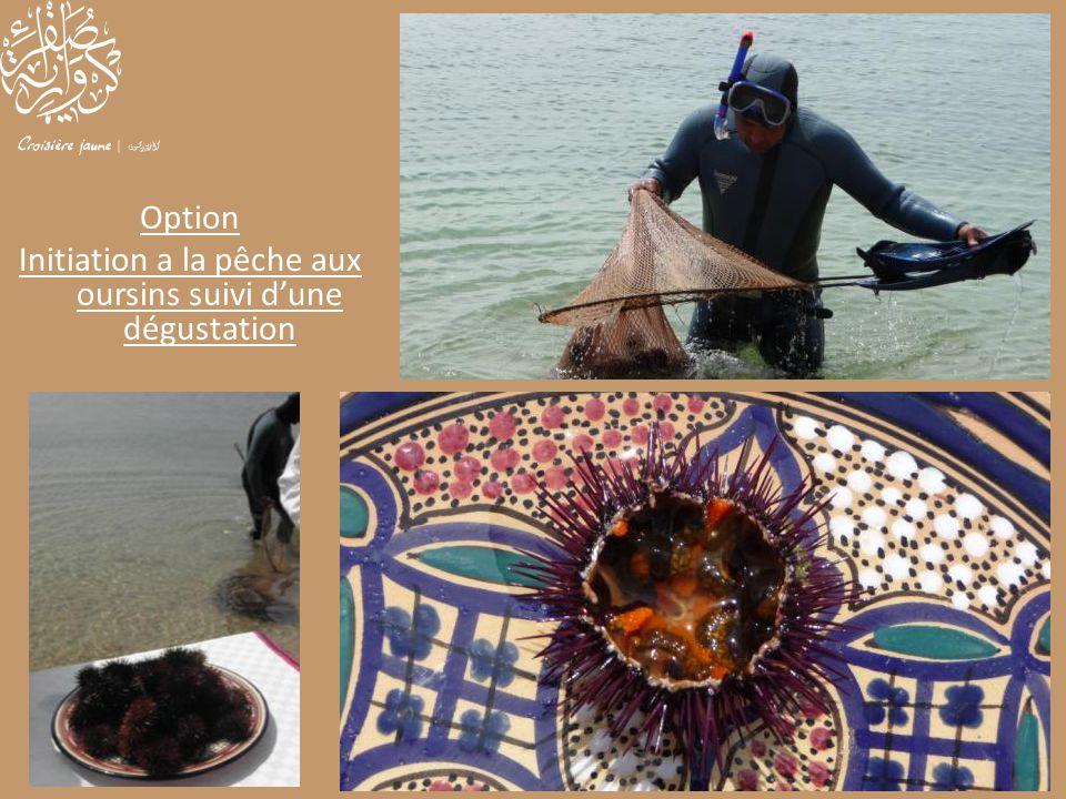 Option Initiation a la pêche aux oursins suivi d'une dégustation