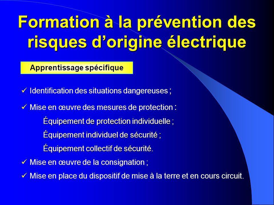 Formation à la prévention des risques d'origine électrique ;  Identification des situations dangereuses ; :  Mise en œuvre des mesures de protection