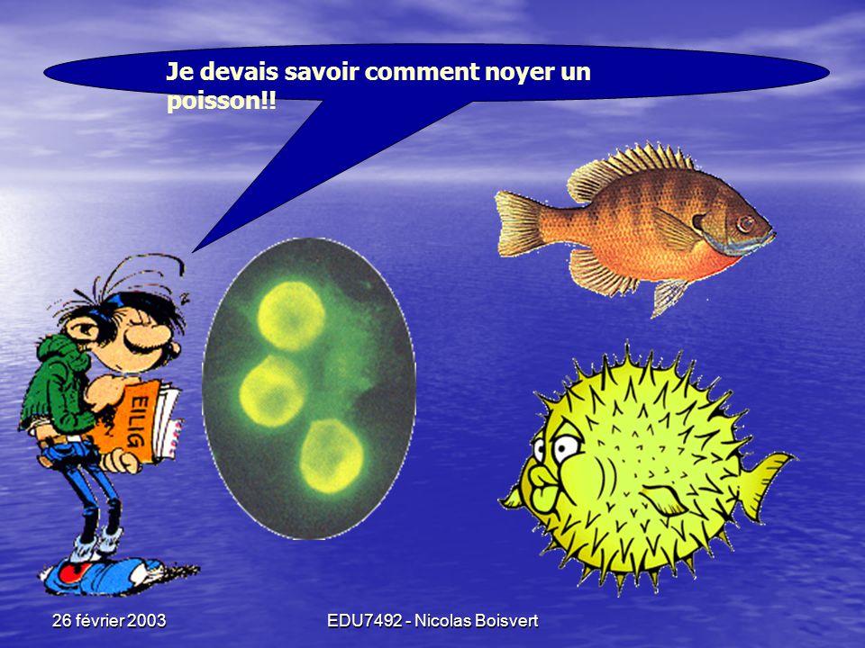 26 février 2003EDU7492 - Nicolas Boisvert Mais ??? Qu'est-ce qu'on peut faire avec ça?