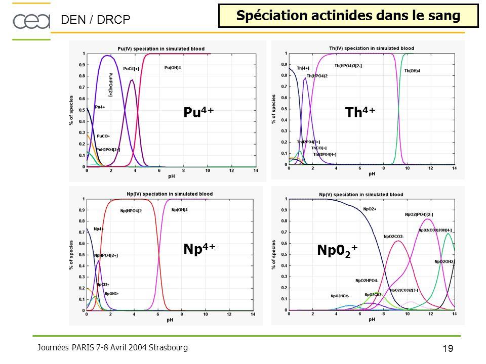 DEN / DRCP 19 Journées PARIS 7-8 Avril 2004 Strasbourg Spéciation actinides dans le sang Pu 4+ Np 4+ Th 4+ Np0 2 +
