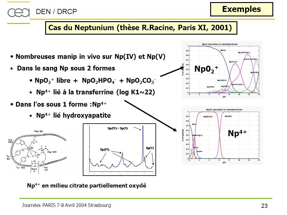 DEN / DRCP 23 Journées PARIS 7-8 Avril 2004 Strasbourg Exemples Cas du Neptunium (thèse R.Racine, Paris XI, 2001) • Nombreuses manip in vivo sur Np(IV