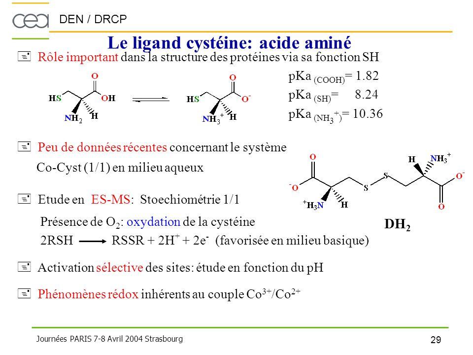 DEN / DRCP 29 Journées PARIS 7-8 Avril 2004 Strasbourg Le ligand cystéine: acide aminé + Rôle important dans la structure des protéines via sa fonctio