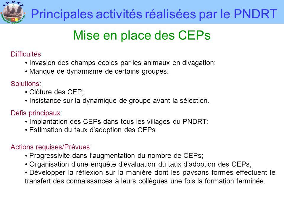 Principales activités réalisées par le PNDRT Mise en place des CEPs Difficultés: • Invasion des champs écoles par les animaux en divagation; • Manque de dynamisme de certains groupes.