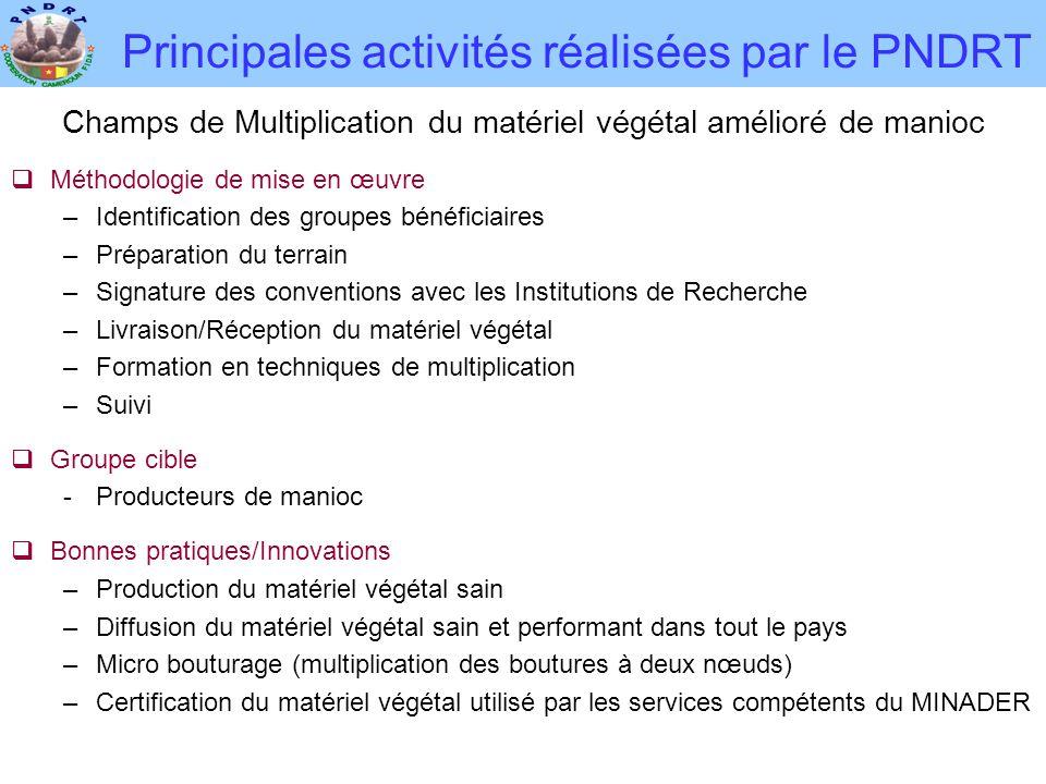 Principales activités réalisées par le PNDRT Champs de Multiplication du matériel végétal amélioré de manioc  Méthodologie de mise en œuvre –Identifi