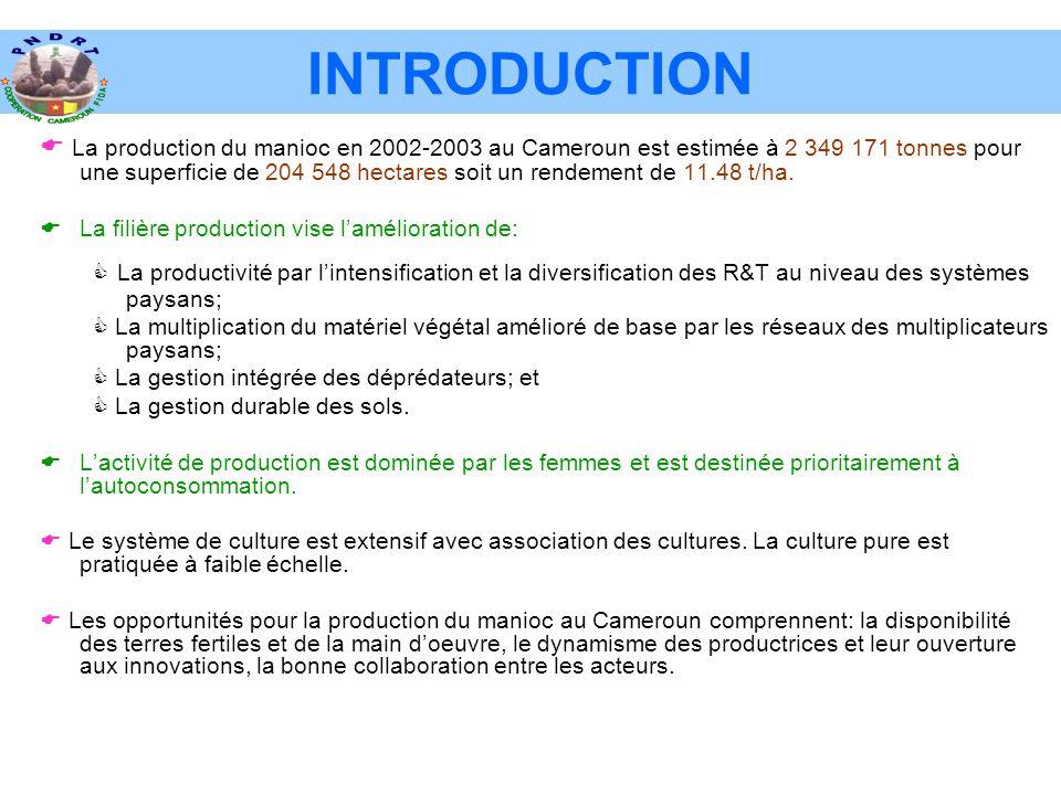INTRODUCTION  La production du manioc en 2002-2003 au Cameroun est estimée à 2 349 171 tonnes pour une superficie de 204 548 hectares soit un rendement de 11.48 t/ha.