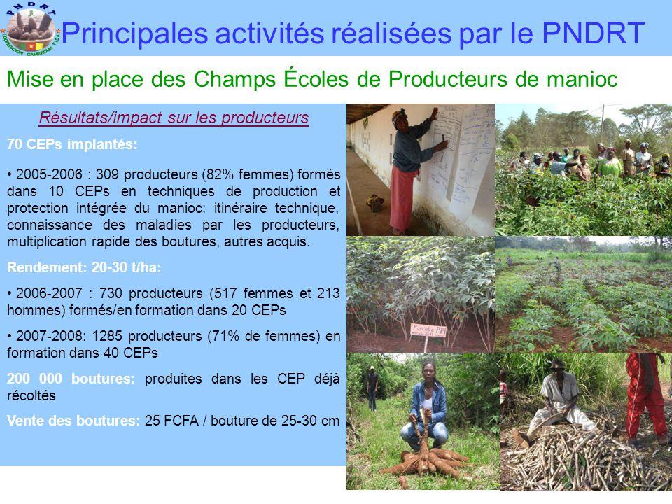 Principales activités réalisées par le PNDRT Mise en place des Champs Écoles de Producteurs de manioc Résultats/impact sur les producteurs 70 CEPs imp