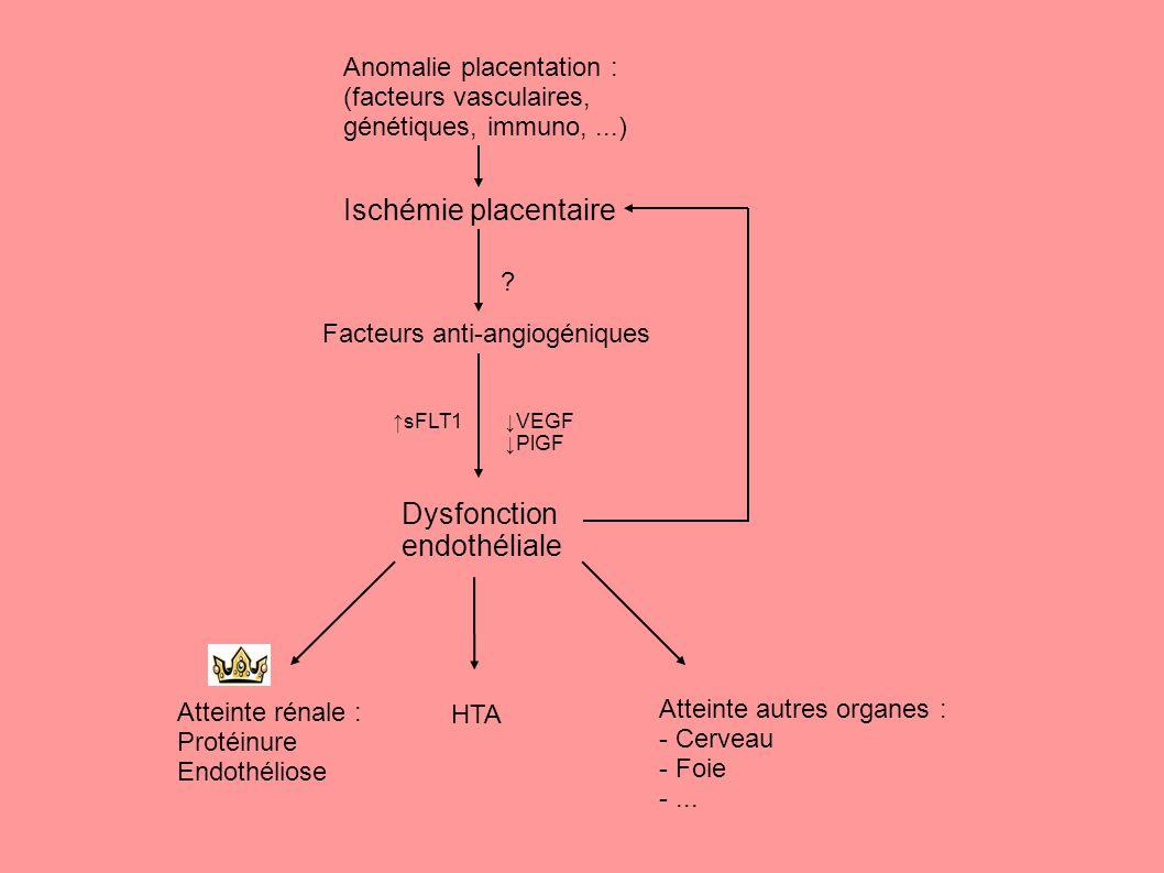 Dysfonction endothéliale Ischémie placentaire Facteurs anti-angiogéniques ↑sFLT1↓VEGF ↓PlGF Atteinte rénale : Protéinure Endothéliose Atteinte autres