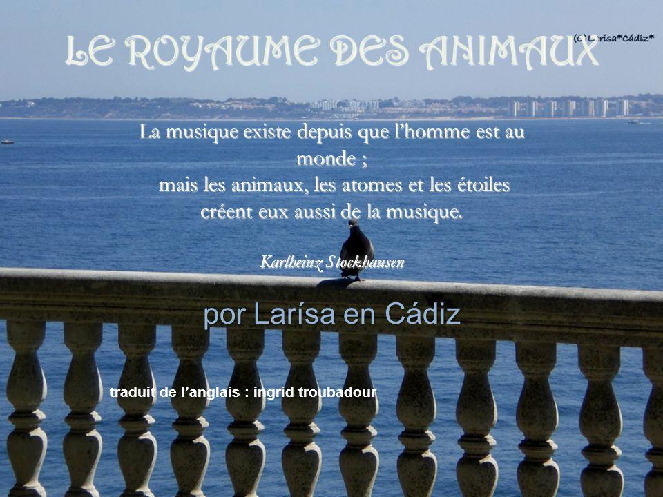 por Larísa en Cádiz La musique existe depuis que l'homme est au monde ; mais les animaux, les atomes et les étoiles créent eux aussi de la musique.