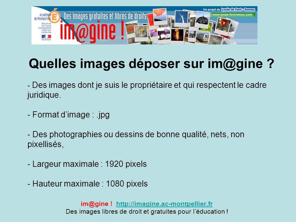 Quelles images déposer sur im@gine ? im@gine ! http://imagine.ac-montpellier.frhttp://imagine.ac-montpellier.fr Des images libres de droit et gratuite