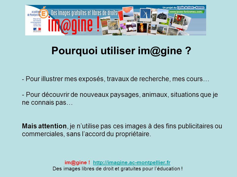 Pourquoi utiliser im@gine ? im@gine ! http://imagine.ac-montpellier.frhttp://imagine.ac-montpellier.fr Des images libres de droit et gratuites pour l'