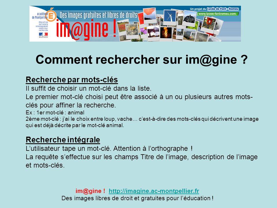 Comment rechercher sur im@gine ? im@gine ! http://imagine.ac-montpellier.frhttp://imagine.ac-montpellier.fr Des images libres de droit et gratuites po