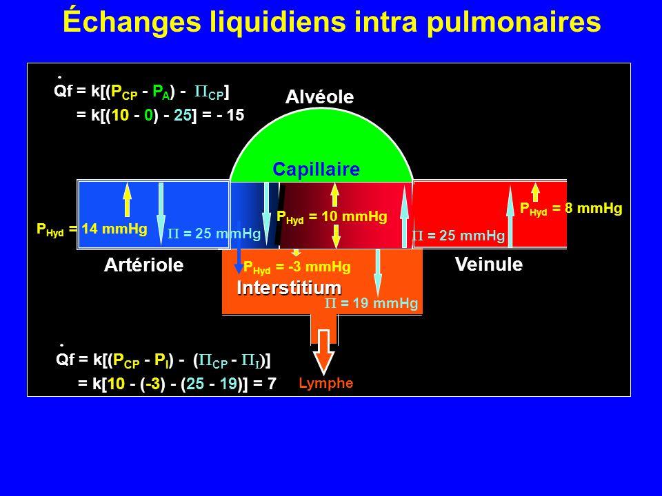 Alvéole P CP Veinule Capillaire P Hyd = 10 mmHg Artériole  = 25 mmHg P Hyd = 14 mmHg  = 25 mmHg P Hyd = 8 mmHg Qf = k[(P CP - P A ) -  CP ] = k[(