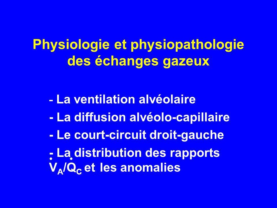 Physiologie et physiopathologie des échanges gazeux - La ventilation alvéolaire - La diffusion alvéolo-capillaire - Le court-circuit droit-gauche - La