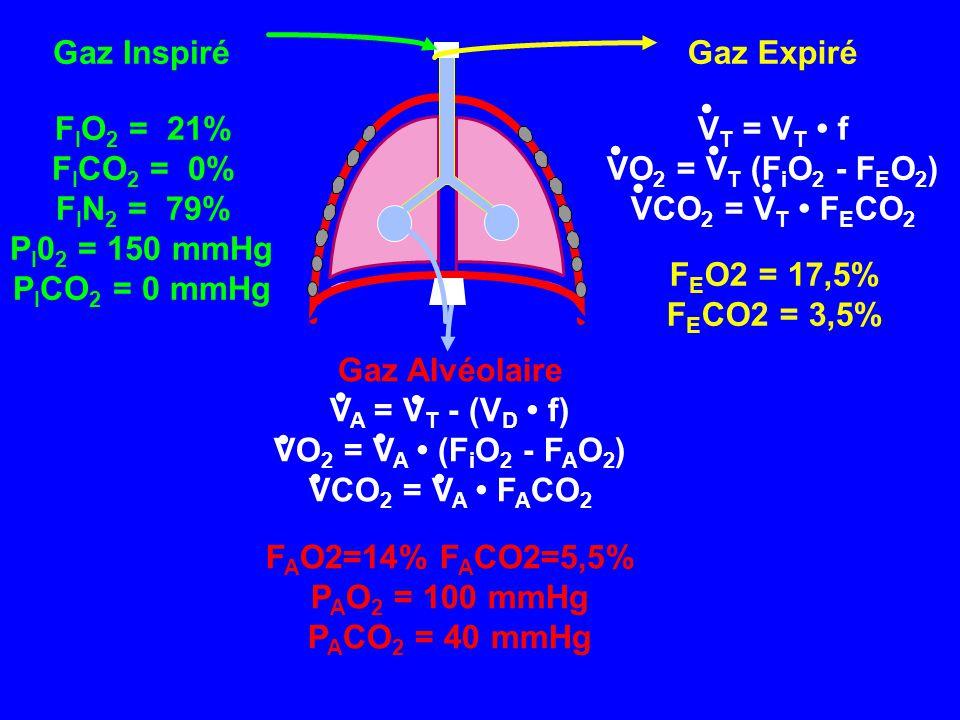 Gaz Inspiré F I O 2 = 21% F I CO 2 = 0% F I N 2 = 79% P I 0 2 = 150 mmHg P I CO 2 = 0 mmHg Gaz Alvéolaire V A = V T - (V D • f) VO 2 = V A • (F i O 2