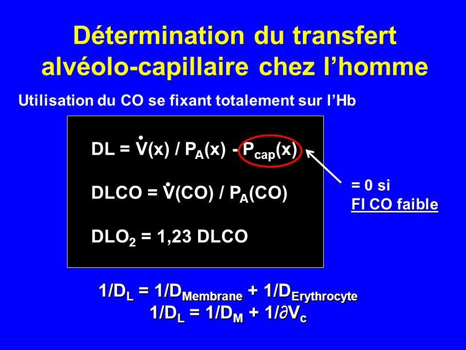 Détermination du transfert alvéolo-capillaire chez l'homme 1/D L = 1/D Membrane + 1/D Erythrocyte 1/D L = 1/D M + 1/∂V c DL = V(x) / P A (x) - P cap (