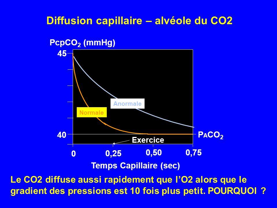 Temps Capillaire (sec) PcpCO 2 (mmHg) 40 45 0,25 0,500,75 Exercice P A CO 2 0 Normale Anormale Diffusion capillaire – alvéole du CO2 Le CO2 diffuse au