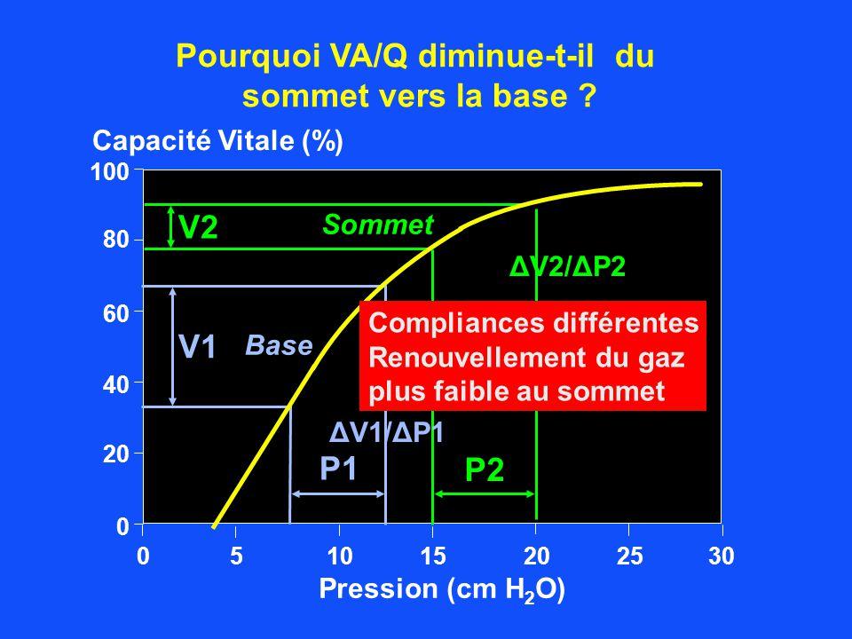 02010 0 20 40 60 80 Pression (cm H 2 O) Capacité Vitale (%) 100 2515305 Base Sommet V2 V1 P1 P2 Pourquoi VA/Q diminue-t-il du sommet vers la base ? Co