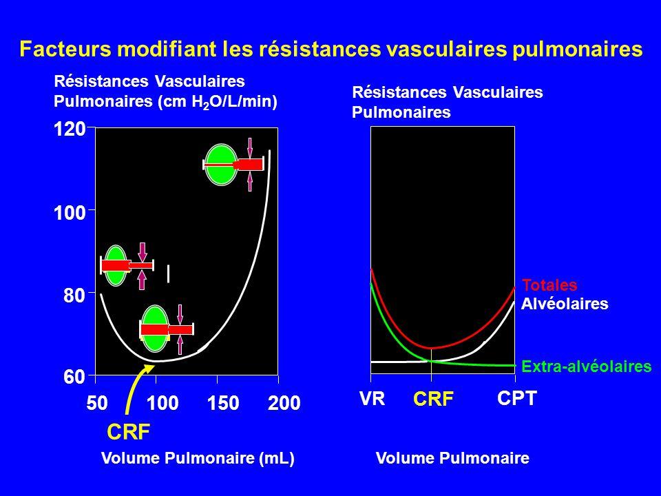 Résistances Vasculaires Pulmonaires (cm H 2 O/L/min) Volume Pulmonaire (mL) 120 50100150200 60 80 100 CRF CPT Totales Alvéolaires Extra-alvéolaires VR