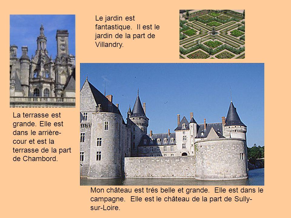 Mon château est trés belle et grande. Elle est dans le campagne. Elle est le château de la part de Sully- sur-Loire. La terrasse est grande. Elle est