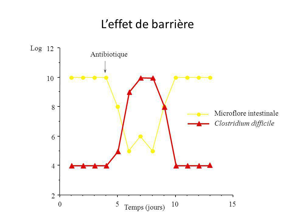 151050 2 4 6 8 12 Microflore intestinale Clostridium difficile Temps (jours) L'effet de barrière Antibiotique Log