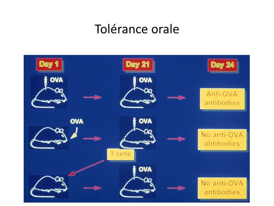 Tolérance orale