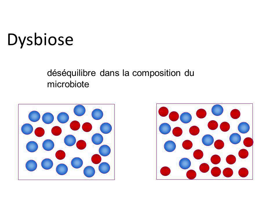 Dysbiose déséquilibre dans la composition du microbiote