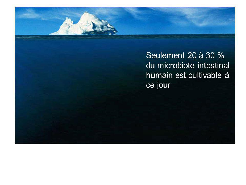 Seulement 20 à 30 % du microbiote intestinal humain est cultivable à ce jour