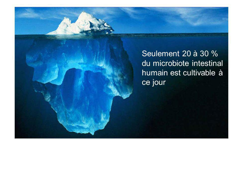  Utilisation d'outils moléculaires indépendants de la culture Seulement 20 à 30 % du microbiote intestinal humain est cultivable à ce jour