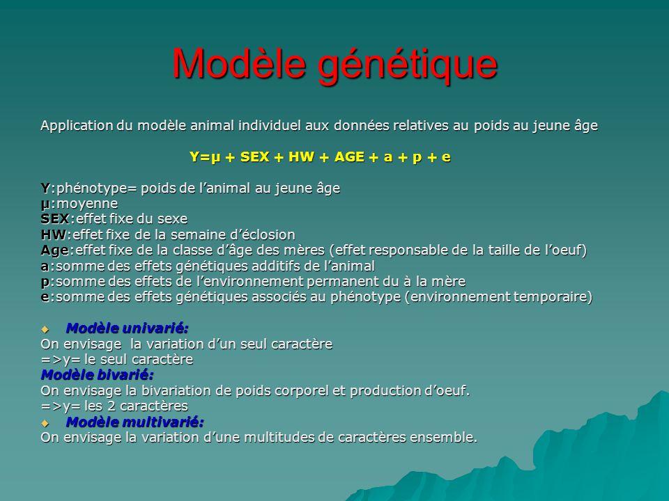 Modèle génétique Application du modèle animal individuel aux données relatives au poids au jeune âge Y=µ + SEX + HW + AGE + a + p + e Y=µ + SEX + HW +