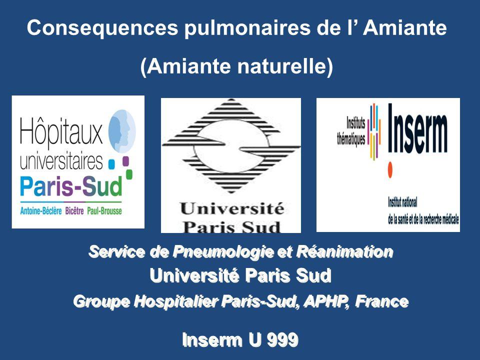 Service de Pneumologie et Réanimation Université Paris Sud Groupe Hospitalier Paris-Sud, APHP, France Inserm U 999 Consequences pulmonaires de l' Amia