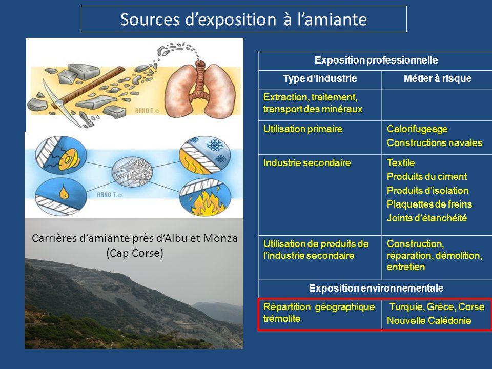 Sources d'exposition à l'amiante Exposition professionnelle Type d'industrieMétier à risque Extraction, traitement, transport des minéraux Utilisation
