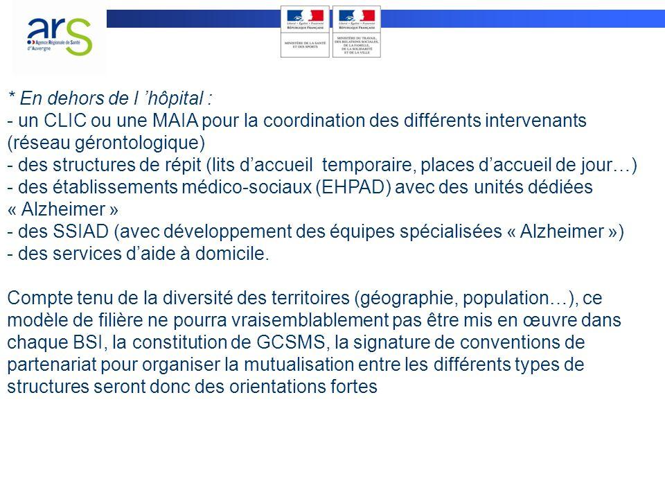 Des problématiques repérées : -articulation SSIAD/HAD -les personnes handicapées vieillissantes -dans le cadre de la filière psychiatrique : prévoir des EHPAD « psychiatriques » sur les territoires .