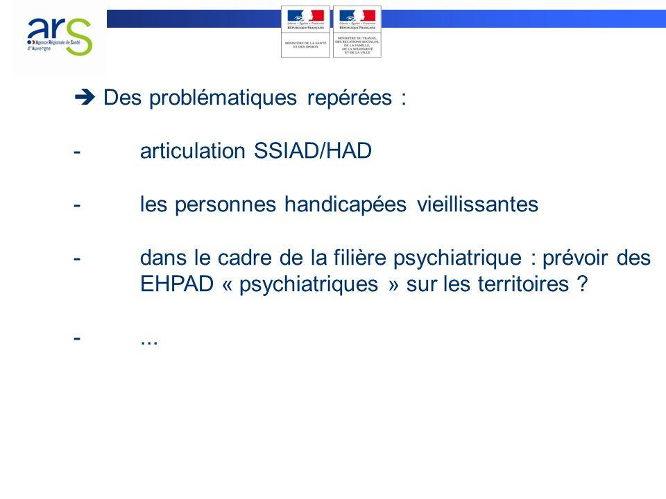  Des problématiques repérées : -articulation SSIAD/HAD -les personnes handicapées vieillissantes -dans le cadre de la filière psychiatrique : prévoir