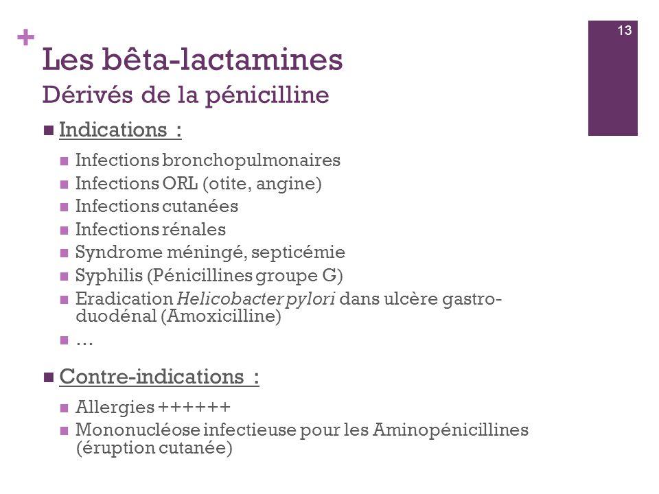 + Les bêta-lactamines Dérivés de la pénicilline  Indications :  Infections bronchopulmonaires  Infections ORL (otite, angine)  Infections cutanées