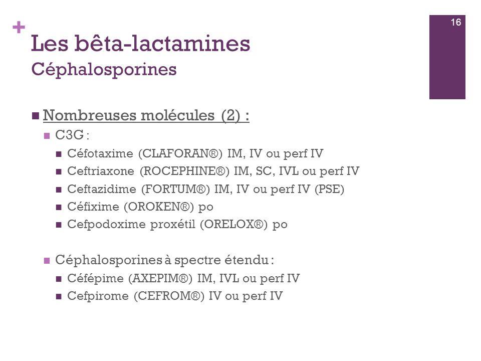 + Les bêta-lactamines Céphalosporines  Nombreuses molécules (2) :  C3G :  Céfotaxime (CLAFORAN®) IM, IV ou perf IV  Ceftriaxone (ROCEPHINE®) IM, S
